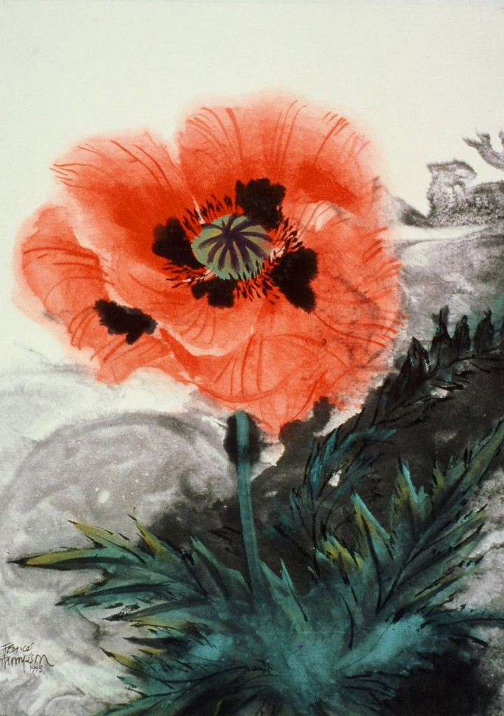 Blowsy Poppy, copyright Fran Thompson, 1993