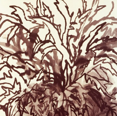 Leaf Calligraphy Series, Artichoke, 2005